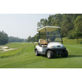 China Hot Sale 2 Seater Golf Cart with Caddie Plate