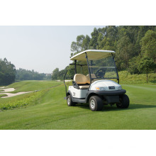 Mini-buggy de golf 2 places à piles homologué Ce