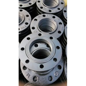 Ductile Iron RF Threaded Flange