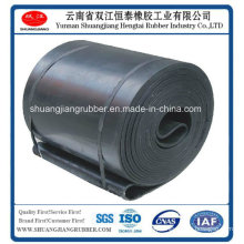 Moulded Edge Endless Conveyor Belt Used in Industry