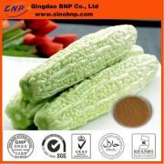 BNP Supply Hot-sale Bitter Melon Extract-Lower Blood Sugar