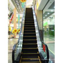 Escalator de transport public avec Max. Hausse 27 mètres