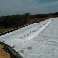 300g, 600g Polyester Filament Geotextile for Landfill