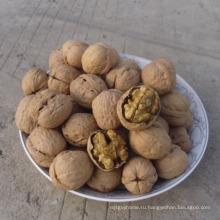 Дешевые грецкие орехи ядра светлую половины, машина грецкого ореха трескать