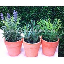 Real toque mini bonsai hierba artificial para la decoración del hogar