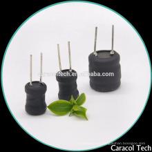 Inductor de potencia DR1013 con tubo UL para el audio del automóvil