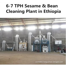 Lentils Chickpea Sesame Soybean Grain Seed Cleaning Plant (Agricultural Machinery)