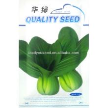 PK03 Hualv disease resistant f1 hybrid pakchoi seeds