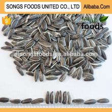 Nome da melhor qualidade de sementes Sunflwoer