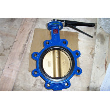 Cast Iron Lug Type Butterfly Valve