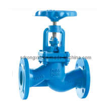 Cast Iron Flange Ends Sdnr Globe Valve