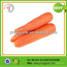 2014 Good Fresh Carrot