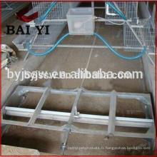 machine de grattoir de fumier de volaille pour la maison de poulet de volaille