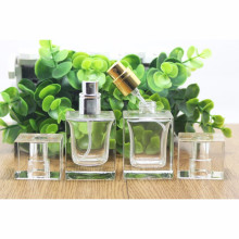 OEM/ODM Wholesale Perfume Bottle with Pump Sprayer
