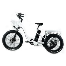 XY-Trio Deluxe Elektro Dreirad für Erwachsene zu verkaufen