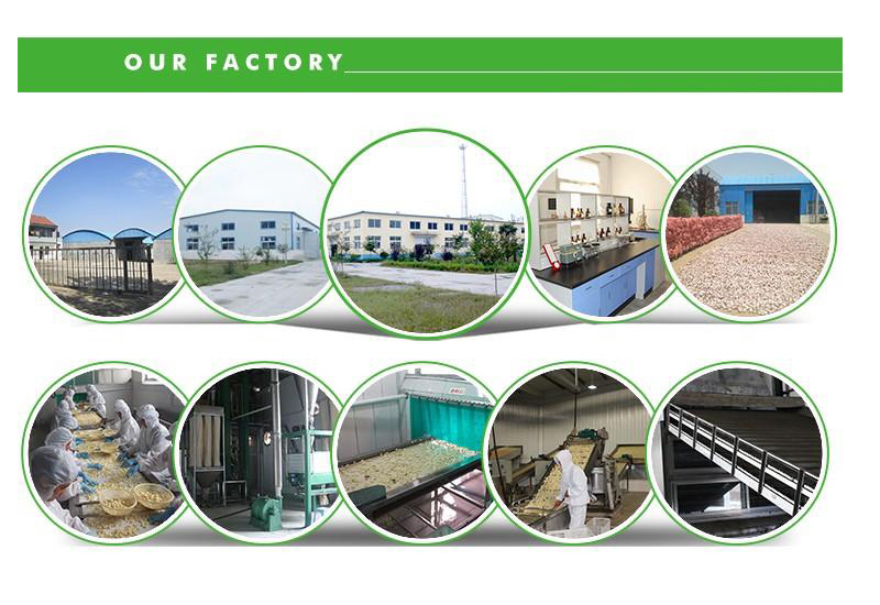1-factory