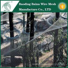 Red de la cerca del acoplamiento de alambre de acero inoxidable de la buena calidad para el aviary