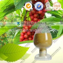 Schisandra Berries P. E. CAS: 61281-38-7 Deoxyschizandrin