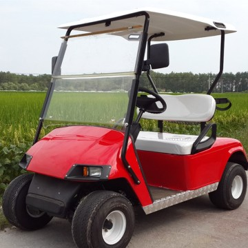 2 seat intelligent pulse charger electric golf cart