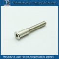 Stainless Steel Special Socket Head Screw