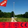 30 M Antenna Monopole Tower By Camouflage