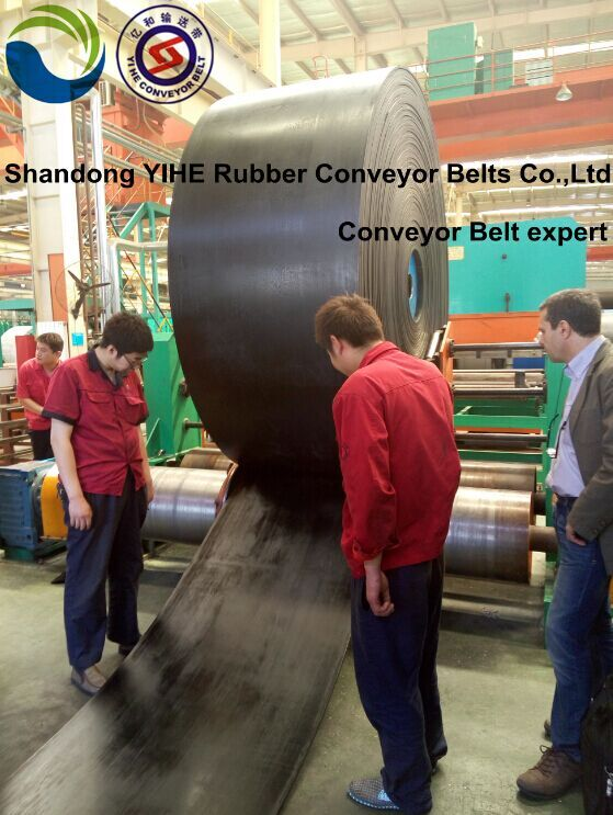 Acid Alkali Conveyor Belt
