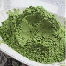 Polvo de brócoli verde natural orgánico de alta calidad en polvo