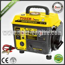 500W Portable Gasoline Generator TNG900L