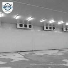CACR-11 CA Atmosphère contrôlée Chambre frigorifique de qualité frigorifique