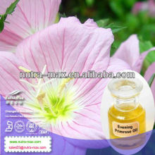 Factory Direct Supply Oenothera Essential Oil