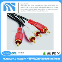 10FT(3M) 2 RCA to2 RCA AV Cable