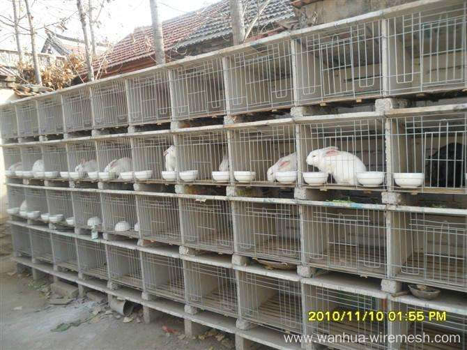 Industrial breeding rabbit cage