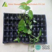 boîte de plantation pépinière boursouflure thermoformé