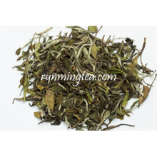 Chá branco branco orgânico da peônia