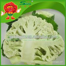 Frozen Chlorifère blanc Chou-fleur