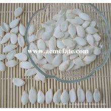 Запеченные семена тыквы
