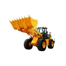 Cargador de la rueda 5 toneladas XCMG marca Lw500f con el certificado del CE