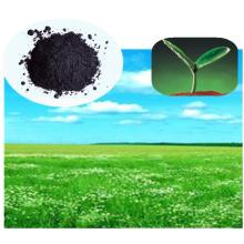 Extrait organique avec extrait d'algues pour aliments naturels