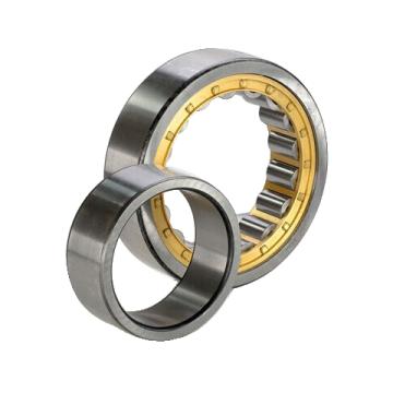 Roulements à rouleaux cylindriques série NF300