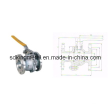 Stainless Steel 304 Flanges End Ball Valve