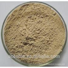 Huperzina A en polvo de alta calidad de la venta superior