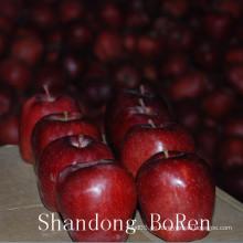 2015 Neue frische Huaniu Apfel