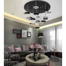 Modern Simpleness LED Decoration Light (8966-16)