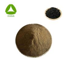 Fertilizante en polvo de extracto de algas / algas