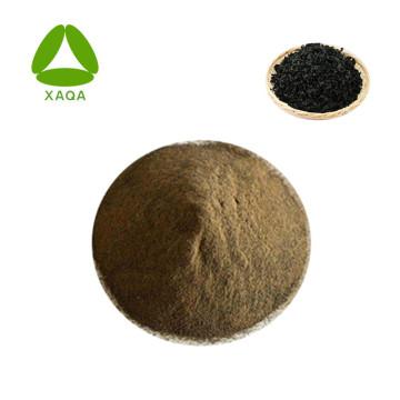 Engrais en poudre d'extrait d'algues / d'algues