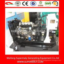 Groupe électrogène diesel 8kw-50kw avec marques Yangdong