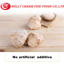 Best healthy product black garlic