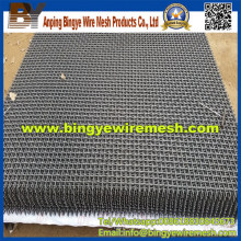 Stainless Steel Crimped Wire Mesh (factory)