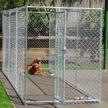 New Chain Link Dog Sages