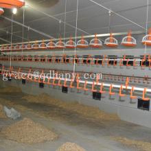 Automatische Geflügel Fütterung und Trinkausrüstung für Hühner